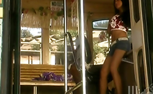 Retro Videotape Of Tourist Having Group Lovemaking In A Bus